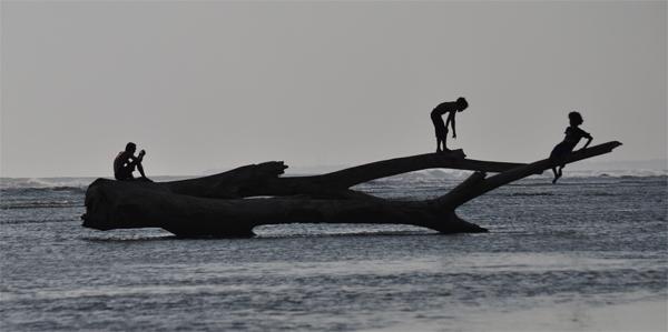 bermain siluet dan kayu di tengah laut
