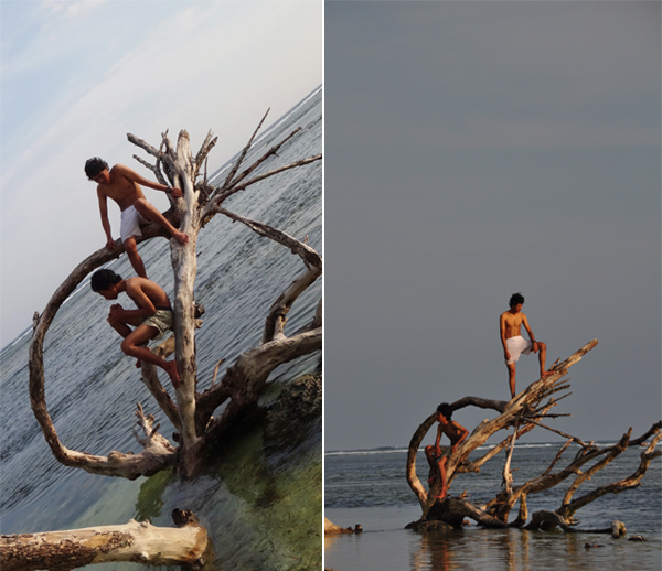 bermain dengan kayu kering di tepi laut