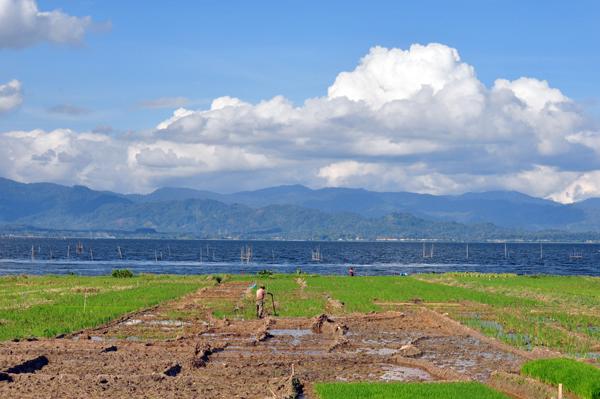 aktivitas petani di tepi danau