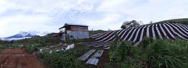 pondok di Ranah Kayu Embun , latarbelakang Gunung Raya