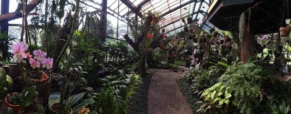 Rumah Anggrek - Kebun Raya Bogor