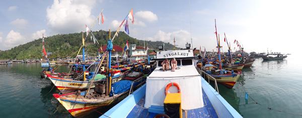 Singa Laut - mengantar kami melintasi Teluk Lampung