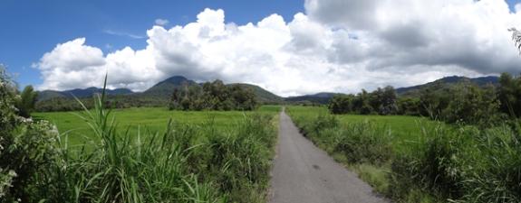 persawahan Lolo - keindahan alam di kecamatan Raya, kabupaten Kerinci , Jambi