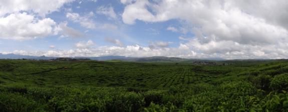 pemandangan di ketinggian 1400-1600 dpl