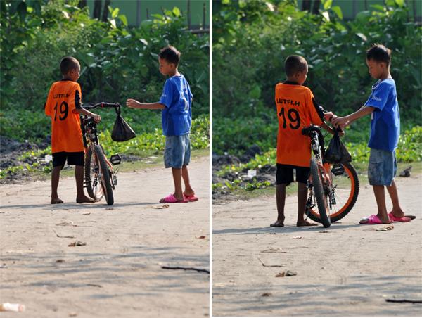 dua sahabat berbagi kerang