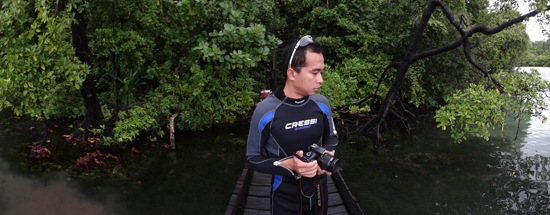 Hutan Mangrove di sekitar danau
