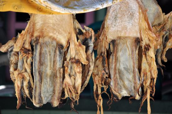 sotong asin khas Derawan