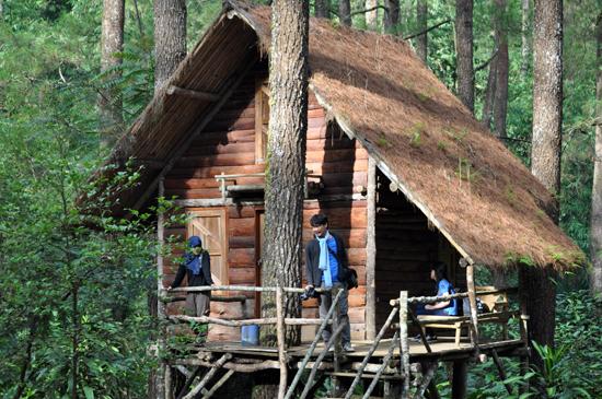 Rumah Pohon -Taman Konservasi Masigit Cikareumbi