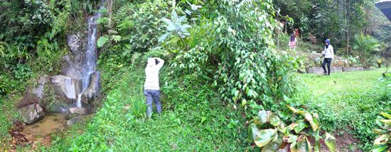 Taman Anggrek Toba di Taman Eden 100