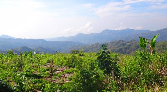 pemandangan indah di puncak bukit