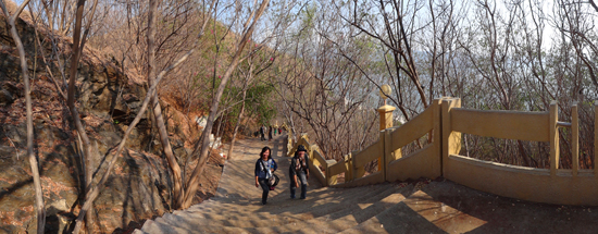 pohon kesambi di kiri kanan tangga menuju bukit