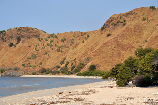 pasir putih pesona bukit sabana