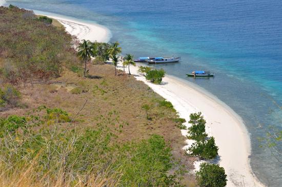 garis pantai eksotis pulau Tepa