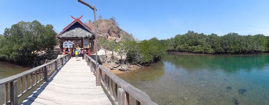 Loh Liang - Pulau Rinca