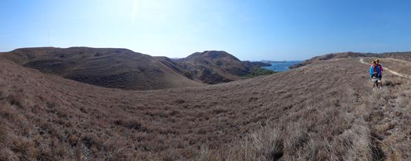 Sabana di atas bukit Pulau Rinca