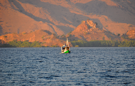 Pulau Komodo , Flores Nusa Tenggara Timur