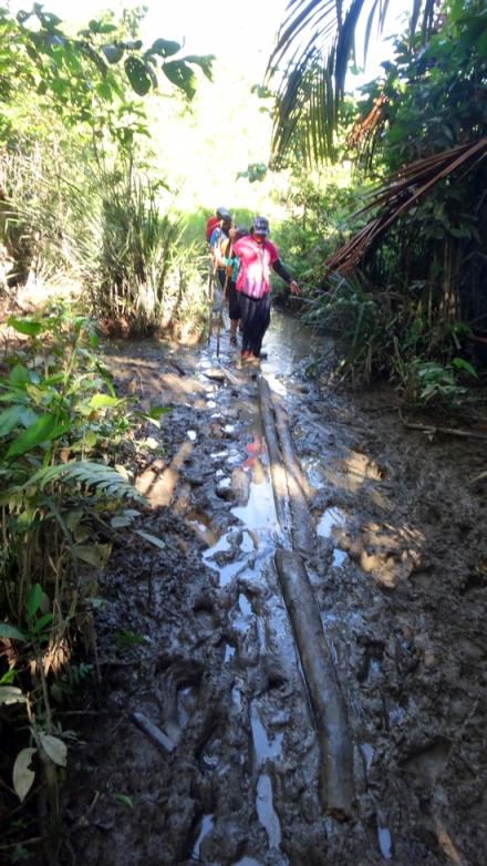 Trekking ekstrim bersama lumpur dan kayu titian