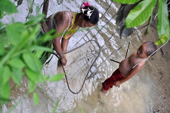 Kalabai mencari ikan di sungai