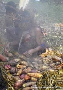 Ubi menjadi menu wajib dalam upacara bakar batu