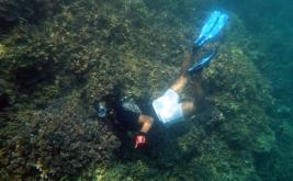 snorkeling di Tanjung Putus