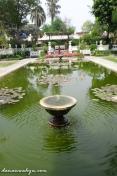 kolam ikan besar di tengah taman