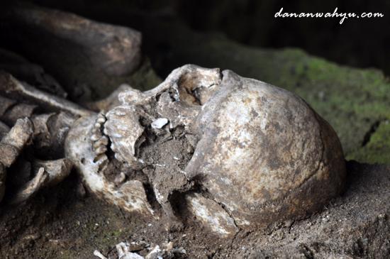 fosil kerangka di Ceruk Ujung Karang Takengon