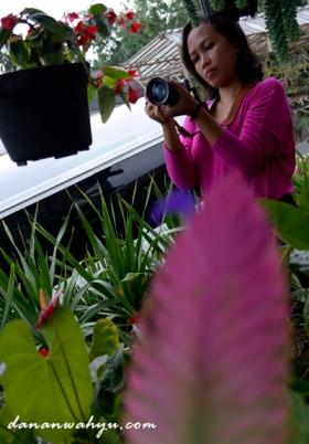 hunting bunga yuk!!!