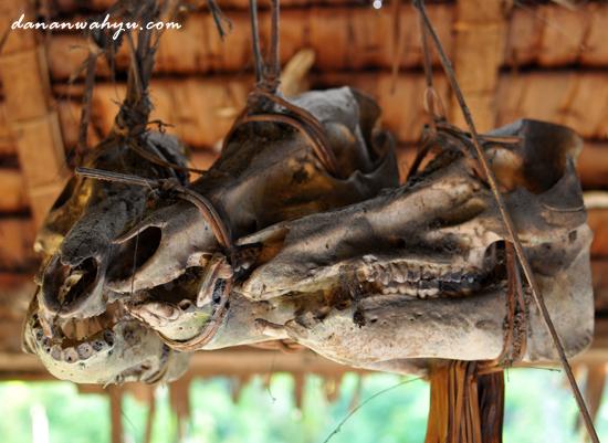 kerangka tulang hewan hiasan uma Mentawai