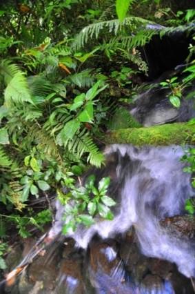 aliran hilir danau Kaco