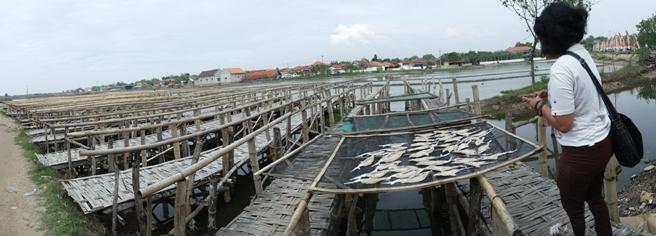 tempat pengeringan ikan