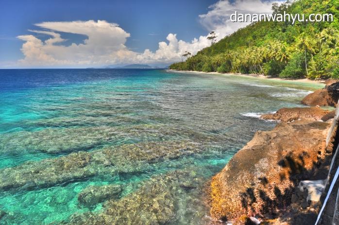 terumbu karang di bawah tebing curam
