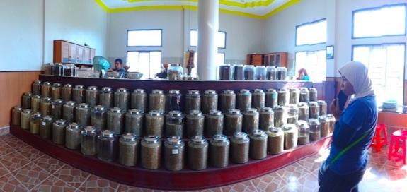 terkagum melihat beragam biji kopi