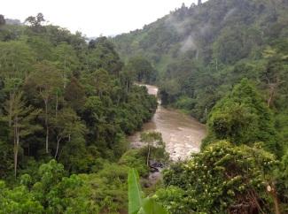 sungai batang Merangin