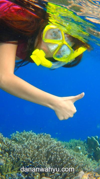 Oke SIp! Snorkeling emang asyik!