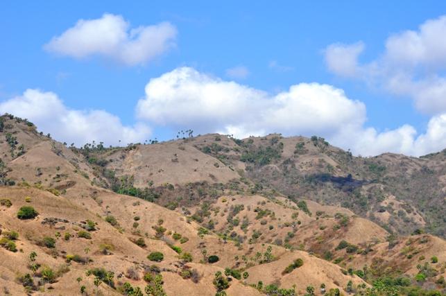 pemandangan ketika trekking di pulau Komodo