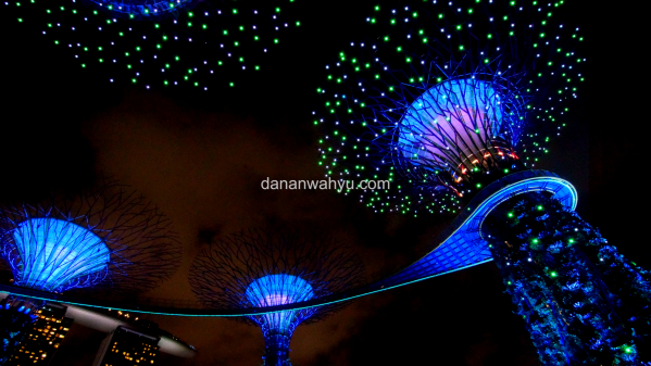 Supertree Garden By  The Bay