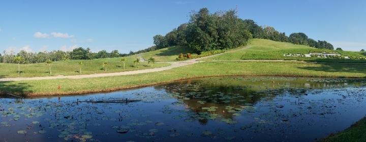 Palm spring salah satu lapangan golf di Nongsa