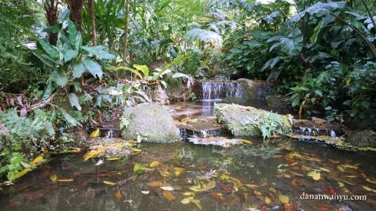 Water Garden menyambut pengunjung Tropical Spice Garden