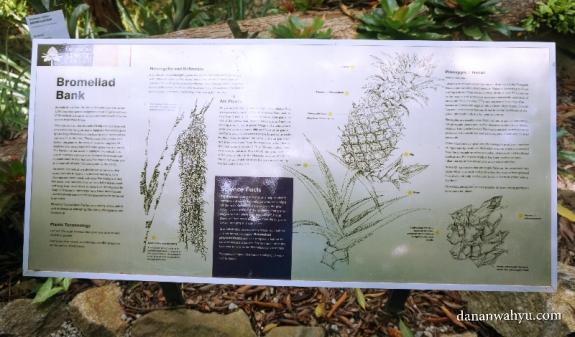 papan keterangan tumbuh-tumbuhan