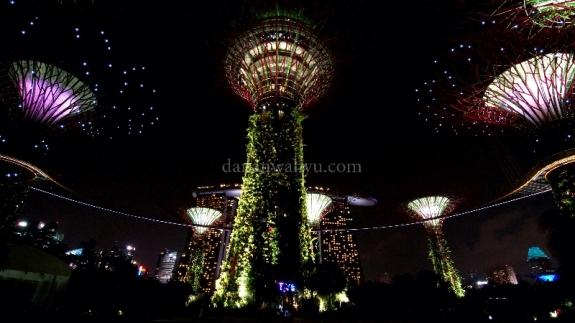 Super Tree di malam hari (jangan lupa saksikan video)