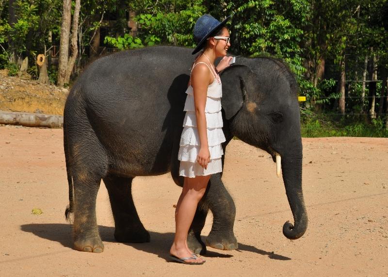kampung gajah kenyir terengganu