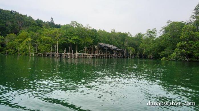 Kelong, pemandangan menarik Tour Mangrove