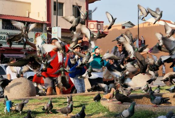 Saya, Maria, Windi dan Arief - Kompak kagetin burung bukan maenin burung