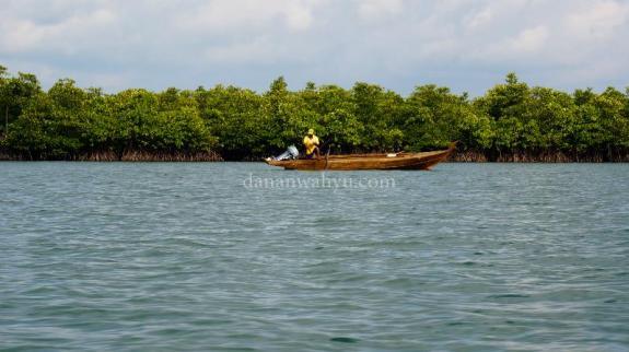 menyusuri pulau kecil dengan bakau rimbun