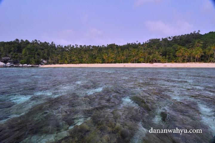 lihat terumbu karangnya keren kan. sayang gelombang tinggi