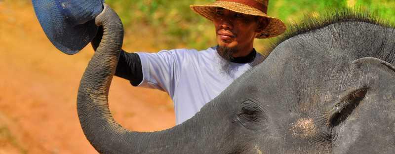 kampung gajah tasik kenyir