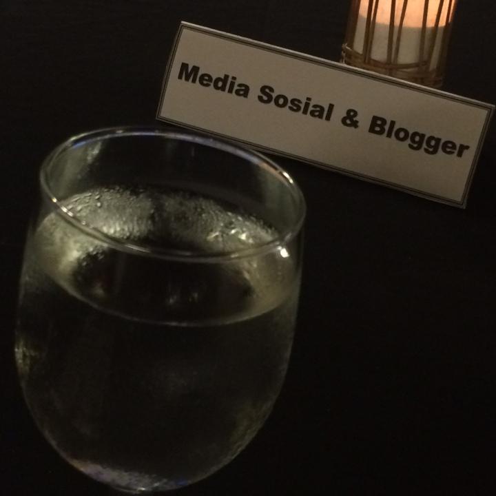 Media Sosial dan Blogger