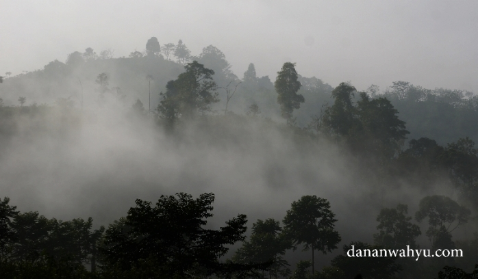 Kabut di Liwa