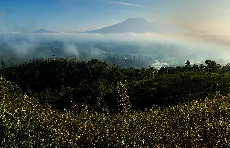Bukit Bawang Bakung Liwa Lampung Barat