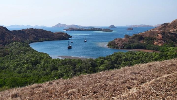 Pulau Rinca destinasi wisata yang akan saya sambangi